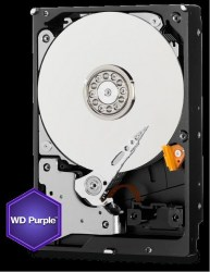 WD_1000_3.5_purple2